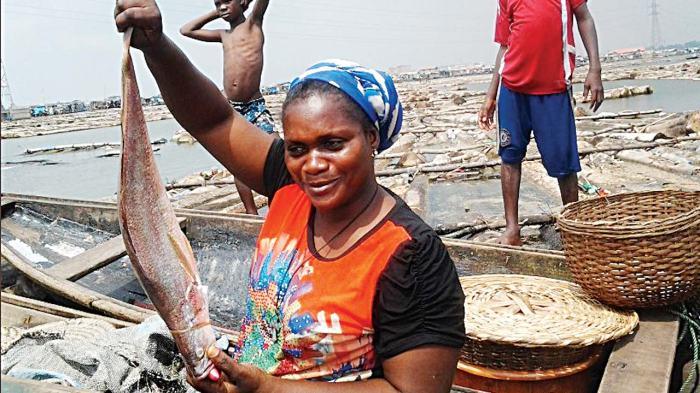 Makoko fish