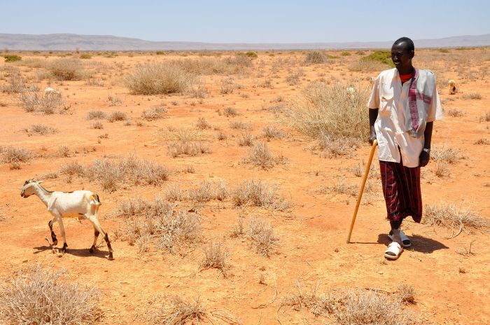 Oxfam-East-Africa-SomalilandDrought011