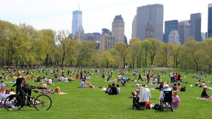 big-central-park-new-york-city_3fd1d686bd03643